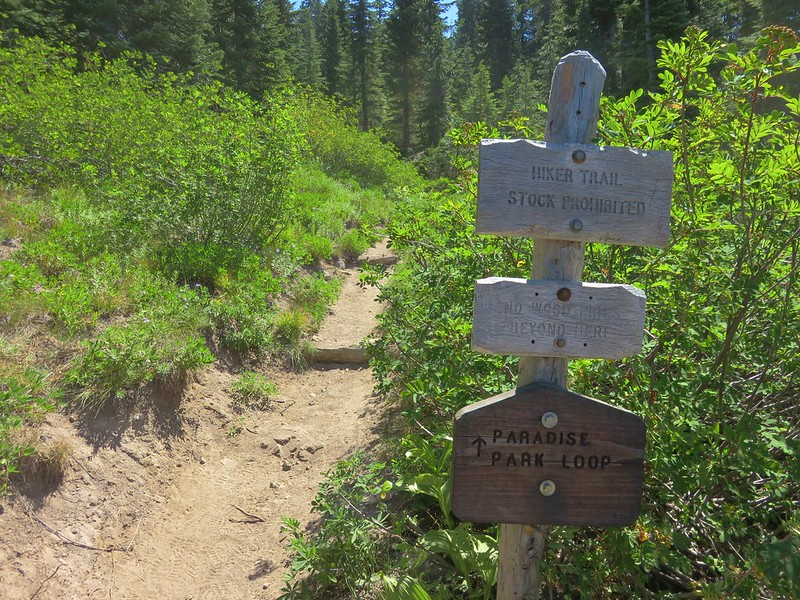 Pacific Crest Trail junction with the northern end of the Paradise Park Loop Trail