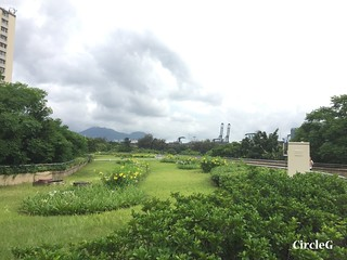CIRCLEG 香港 遊記 美孚 嶺南之風 荔枝角公園  (20)