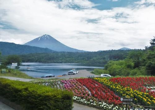 jp16-Fuji-Saiko-nord (1)