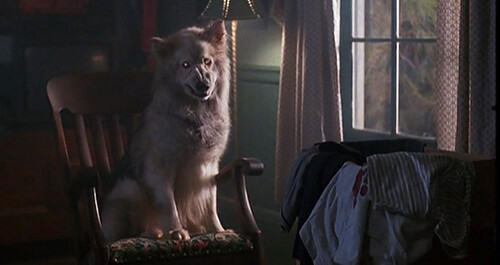 Pet Sematary II - screenshot 9