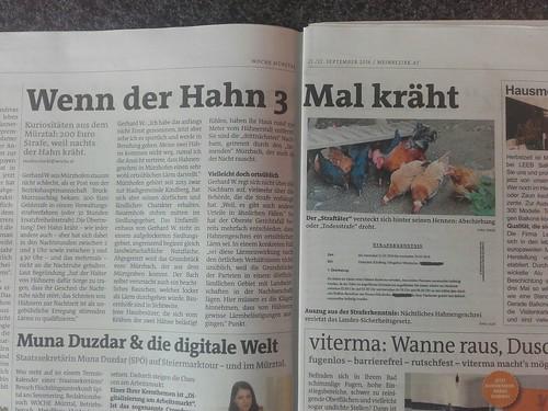 zeitung_hahn