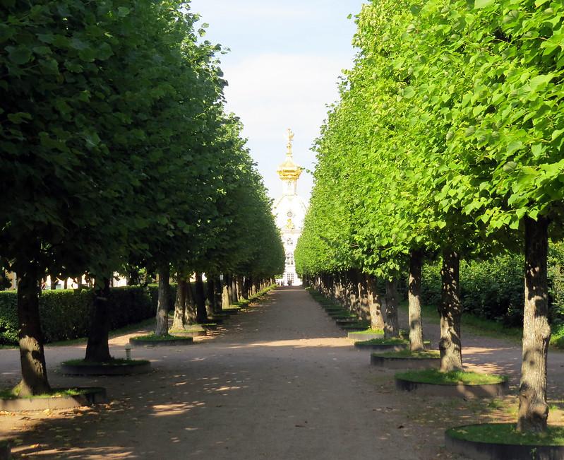Верхний сад