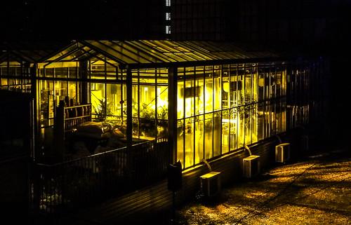 Nuit blanche 2012 paris d cor sonore cr e un jardin for Cree un jardin