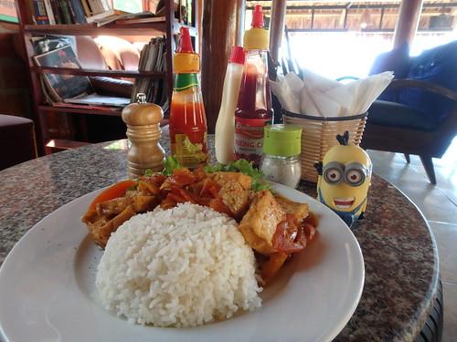 rice-tofu