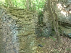 More Ruins Near Cochran Mill Falls