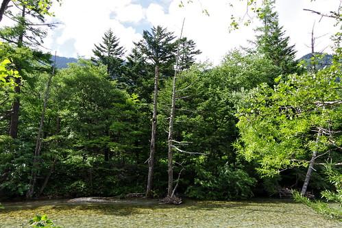 Azusa-gawa river 梓川 Kamikochi 2016 summer 42