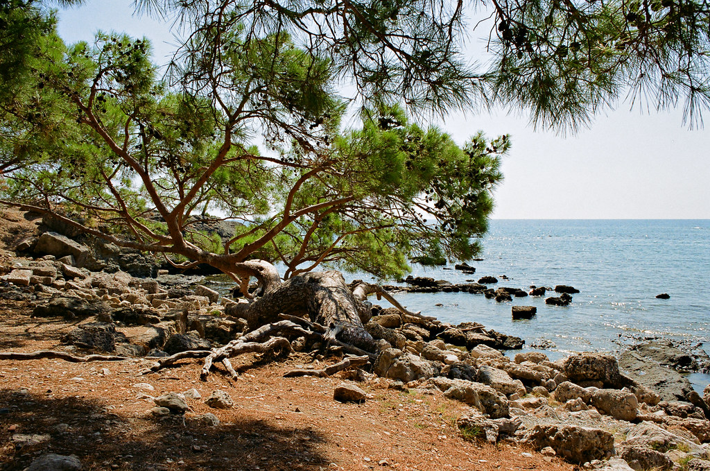 Phaselis, Central harbour