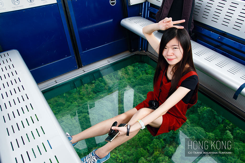 hong kong Ngong Ping 360 Crystal Cable Car