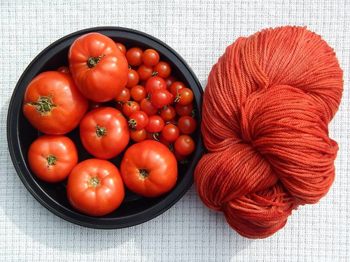 Jersey tomatoes and yarn