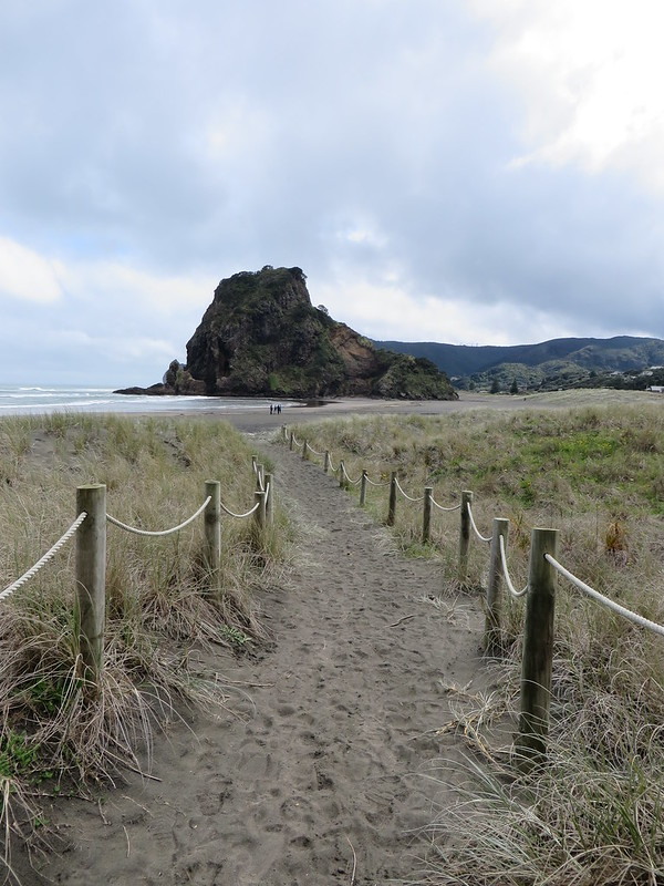 Piha & Mission Bay