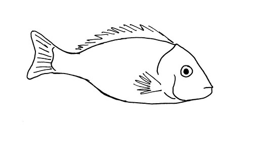 Image Result For Salmon Coloring Pages