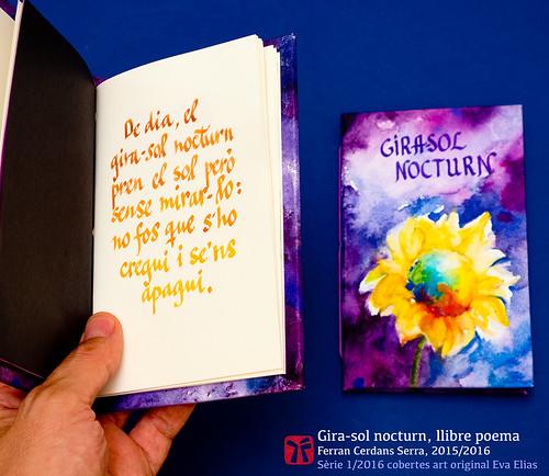 Llibre poema Gira-sol nocturn, Ferran Cerdans 2016