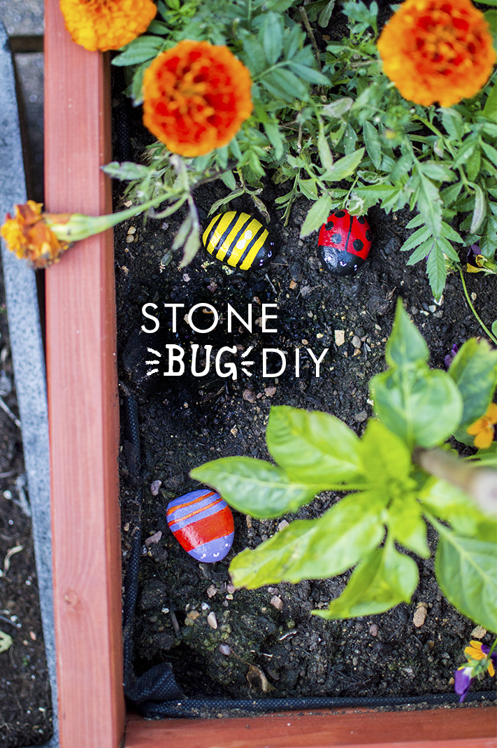 DIY-stone-bug-tutorial