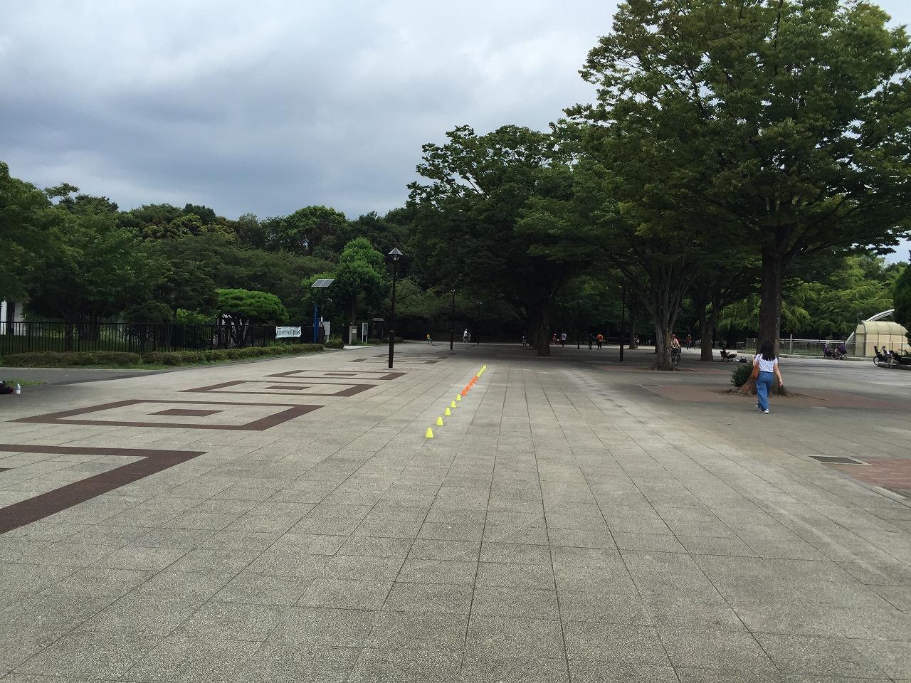20160812_光が丘 (2)