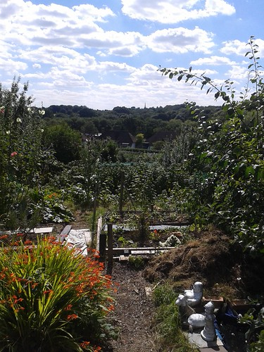 Fitzroy Park Allotments