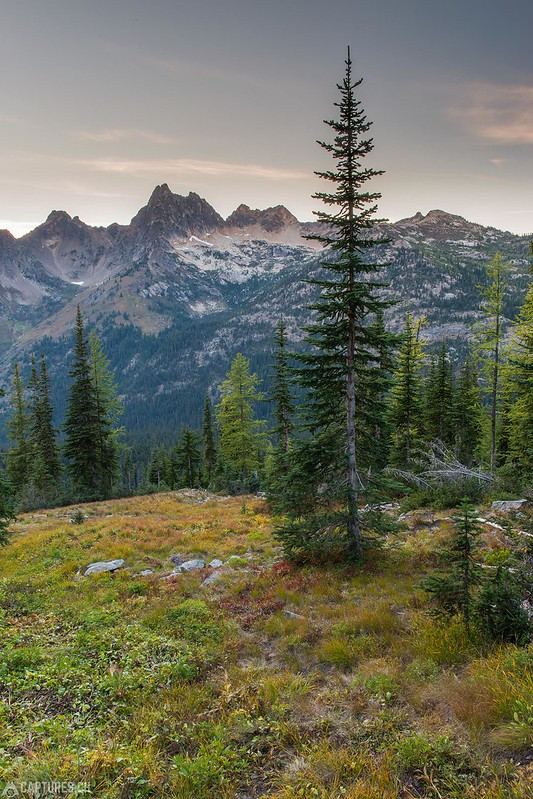 View - North Cascades National Park