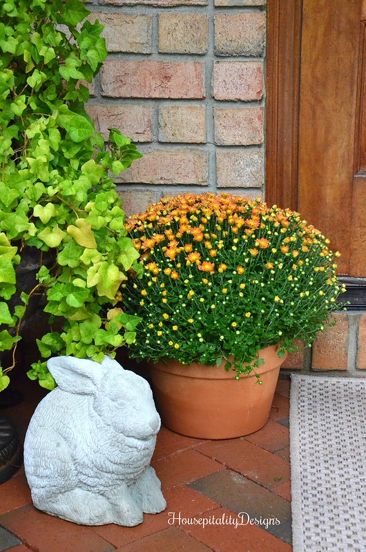 Garden Bunny - Fall mum - Housepitality Designs