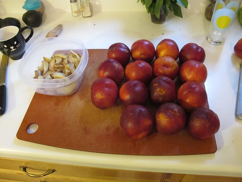 Nectarine sorbet   Flickr - Photo Sharing!