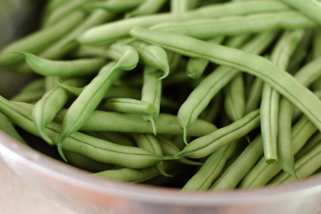 Green beans by Eve Fox, the Garden of Eating, copyright 2016