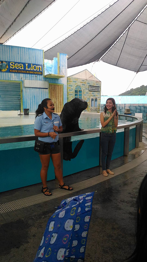 Subic Ocean Adventure Sea Lion Show Erly