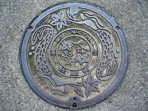 Saya Aichi, manhole cover (愛知県佐屋町のマンホール)