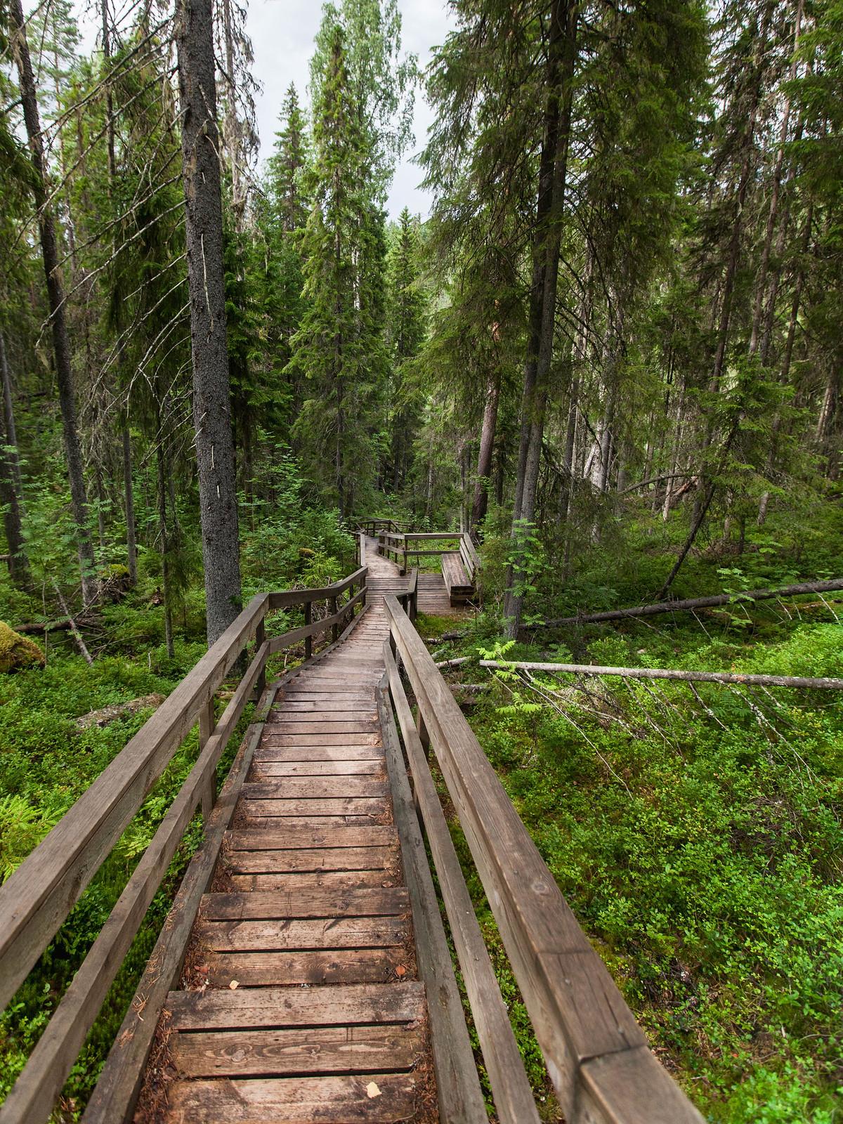 Helvetinjärvi kansallipuisto
