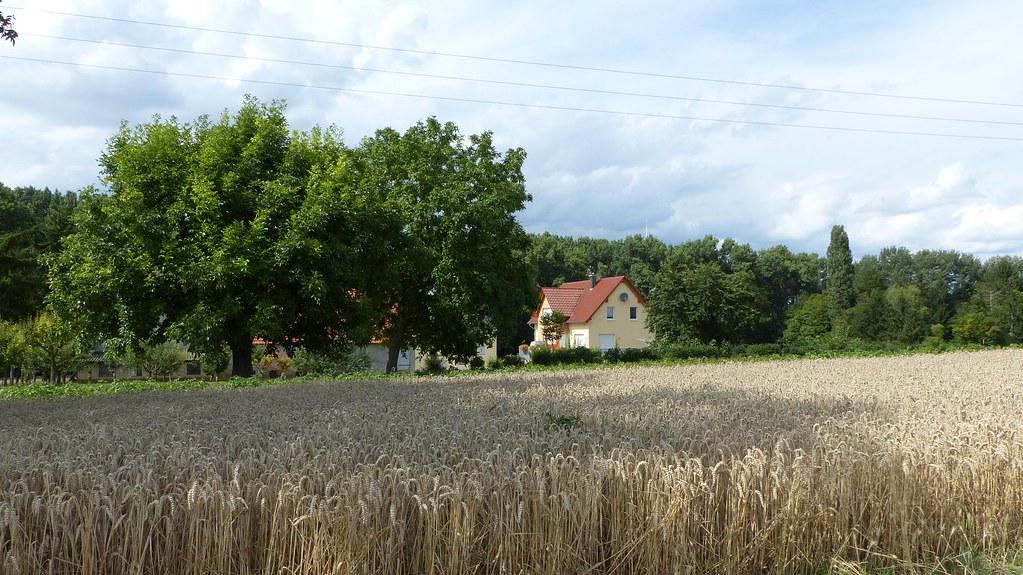 Schanzenmühle