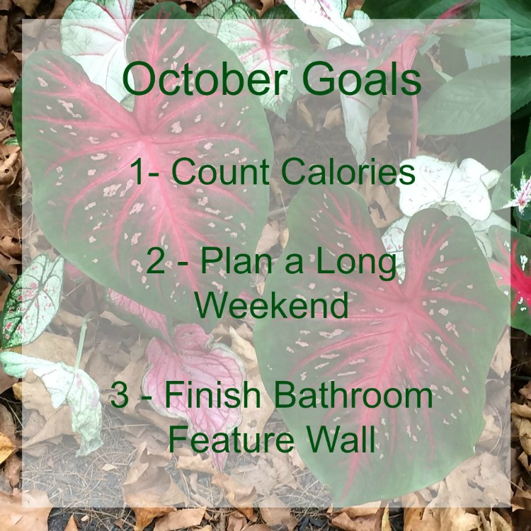 Goals-October-NEW-mom-home-guide
