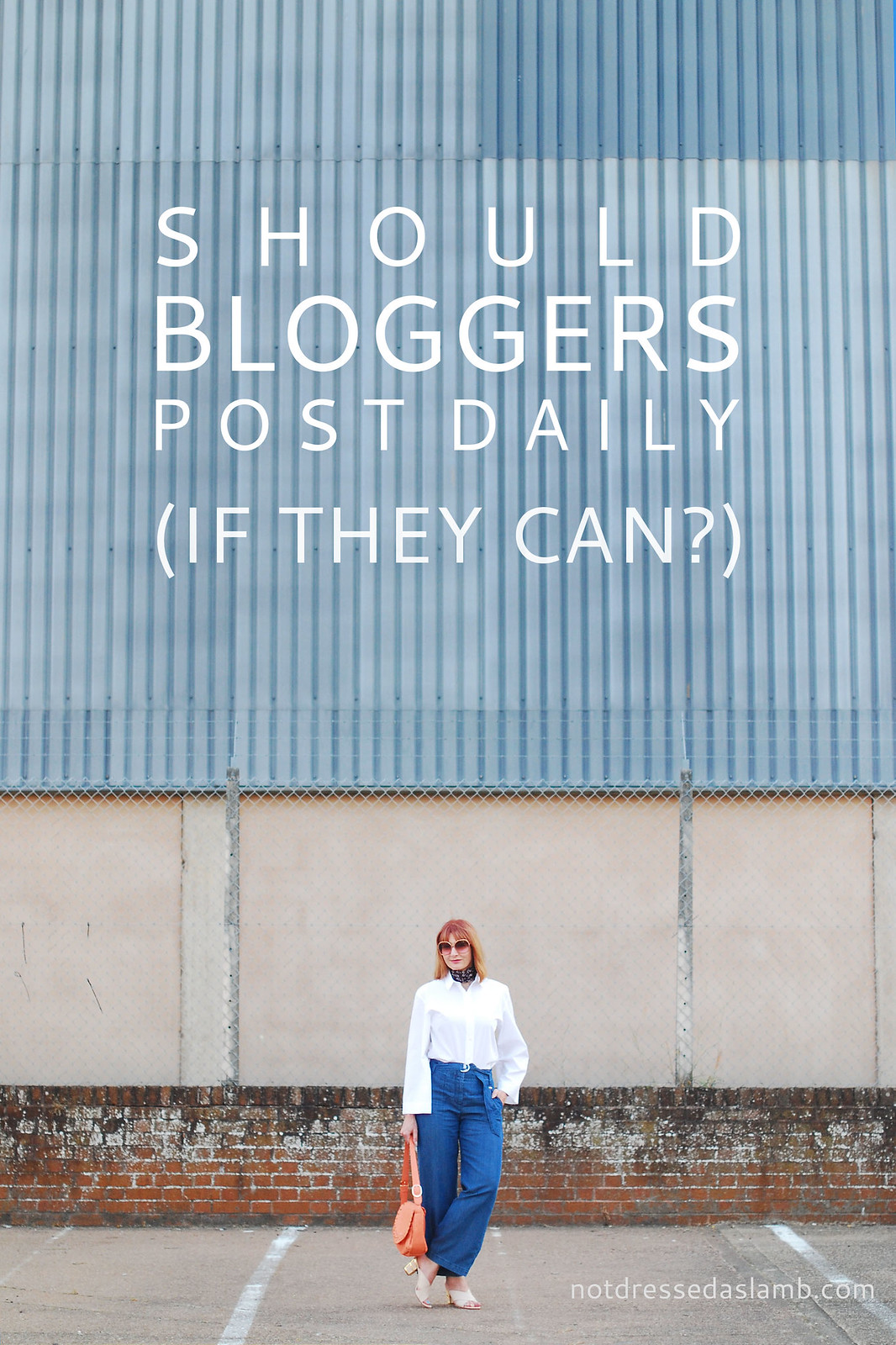 Should Bloggers Post Every Day If They Can? | Not Dressed As Lamb, over 40 style blogger, muses on daily posting
