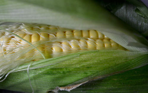 More Corn - August 22nd 2012 | by The Hungry Cyclist
