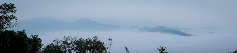 Panorama Hill, Sungai Lembing - sea of cloud