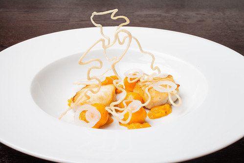 "Halibut with cape gooseberry, chipotle, and masa ""wire"" 04 
