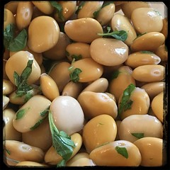 #Lupini #Bean #Oregano #Homemade #CucinaDelloZio - olive oil + lemon juice