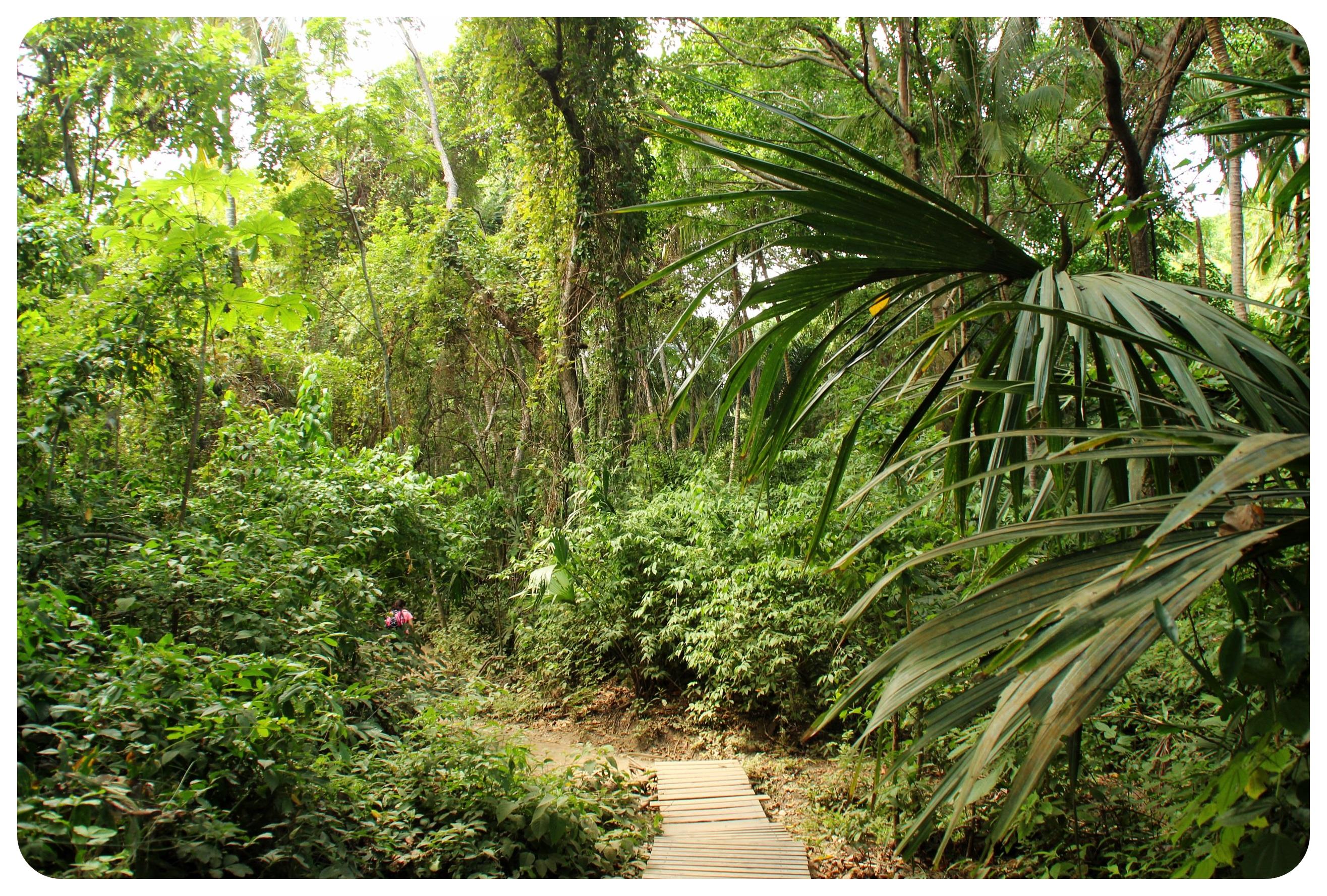 tayrona hike