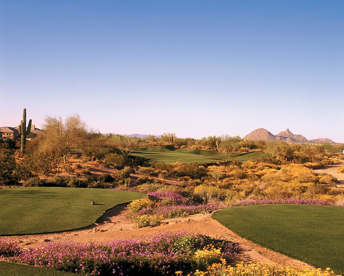 Grayhawk Golf Club These Golf Courses Are Part Of The