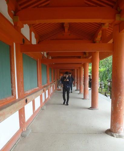 jp16-Nara-j1-Kasuga Taisha (7)