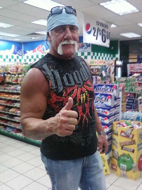 Hulk_Hogan_by_KnightNephrite