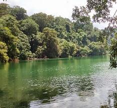 Pulau Bawean