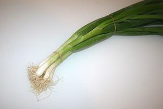 02 - Zutat Frühlingszwiebeln / Ingredient spring onions