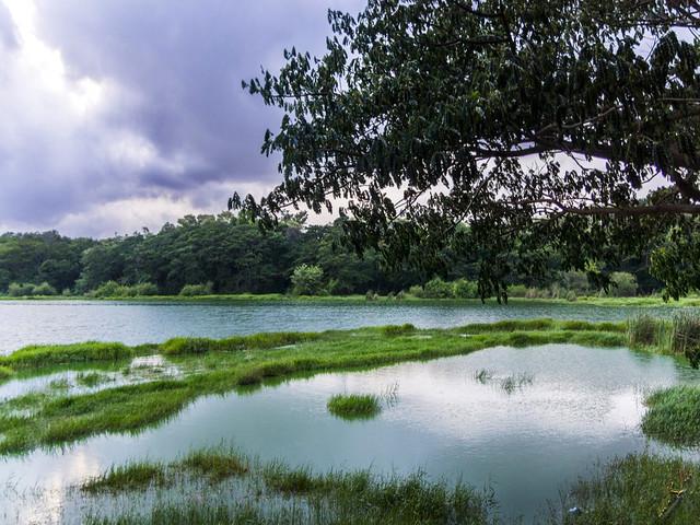 कुक्करहल्ली झील