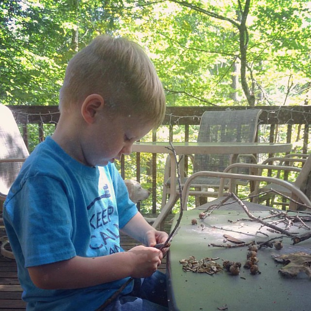 Treehouse Homeschool