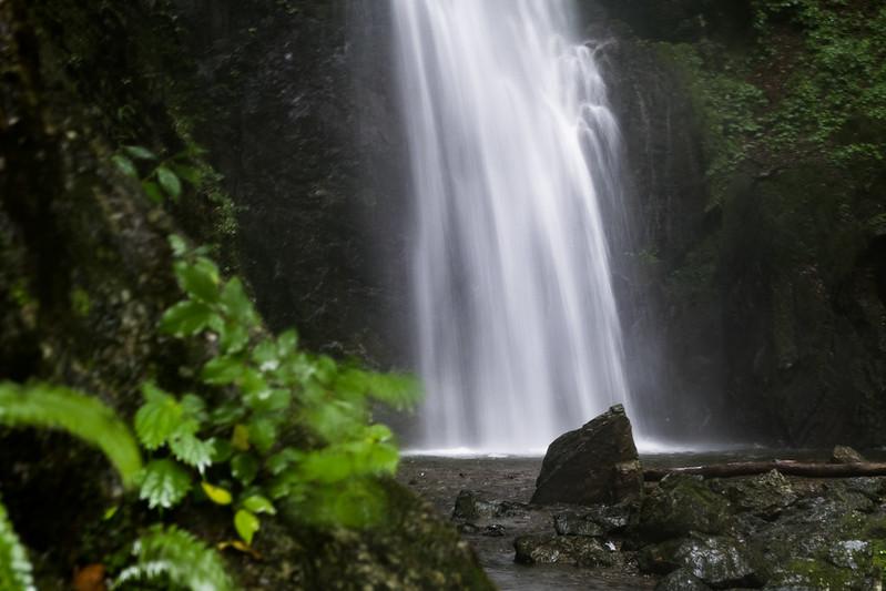 2016年08月20日 川苔山 百尋の滝