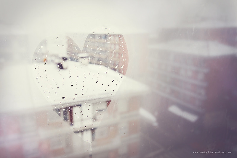 Bye bye snow!
