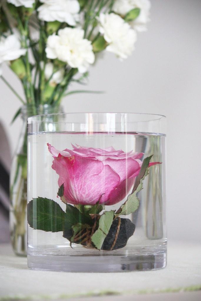 ruusu veden alla