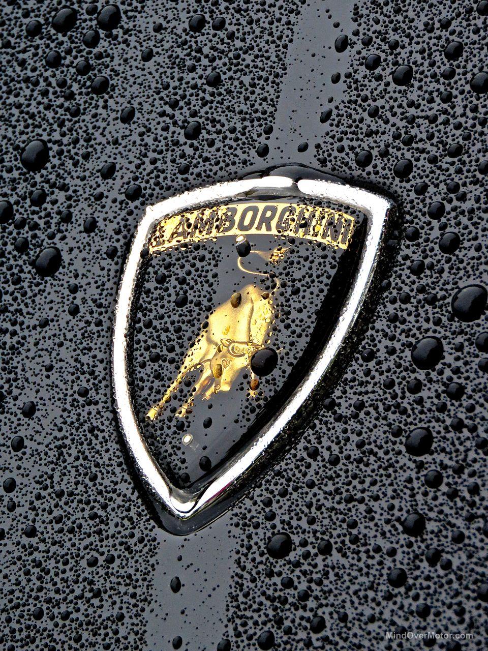 Wet Lamborghini Miura Greenwich 3