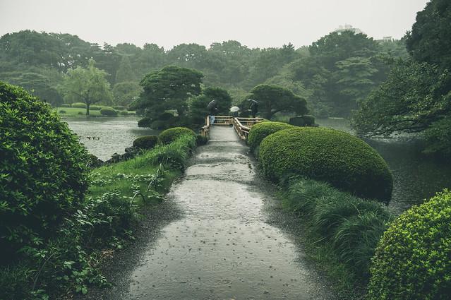 Shinjyukugyoen_22