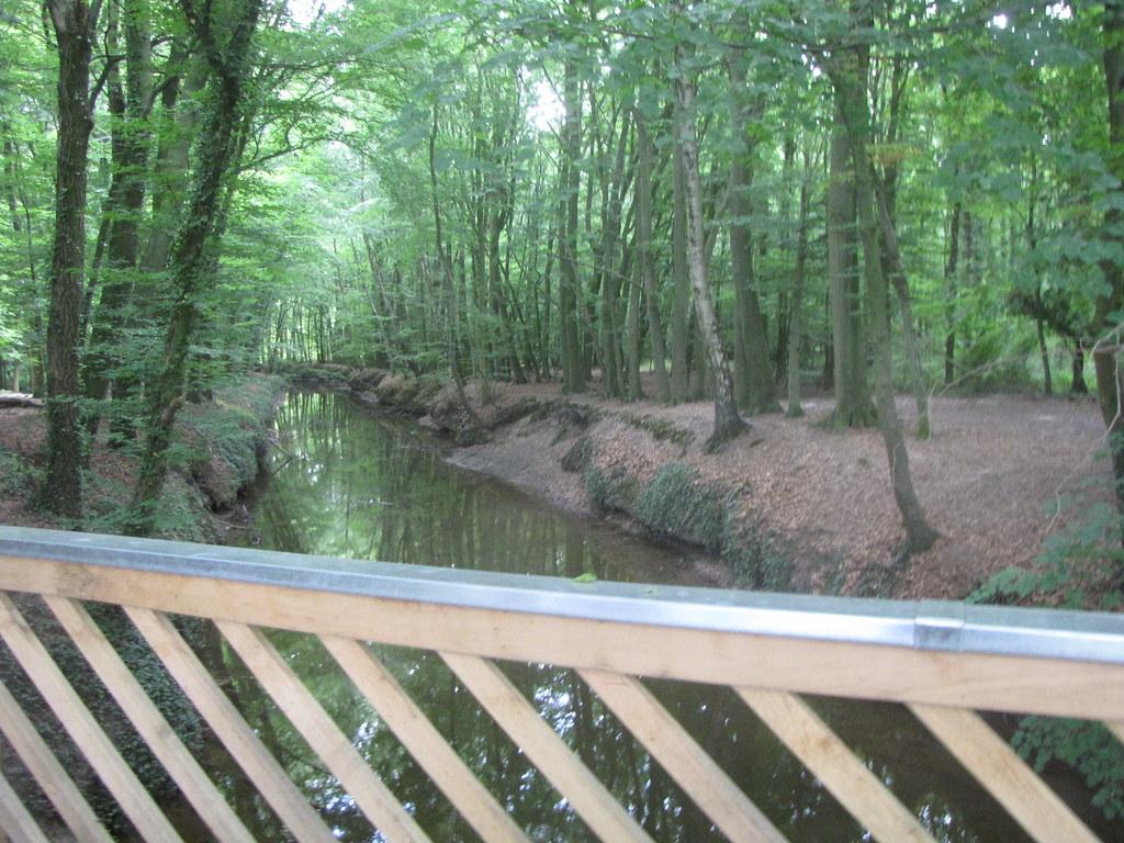 Wolbeck Tiergarten Brücke