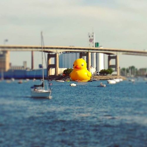 GIANT DUCK IN THE WATER! FLY YOU FOOLS!! #canalside #buffalo #bigassduck