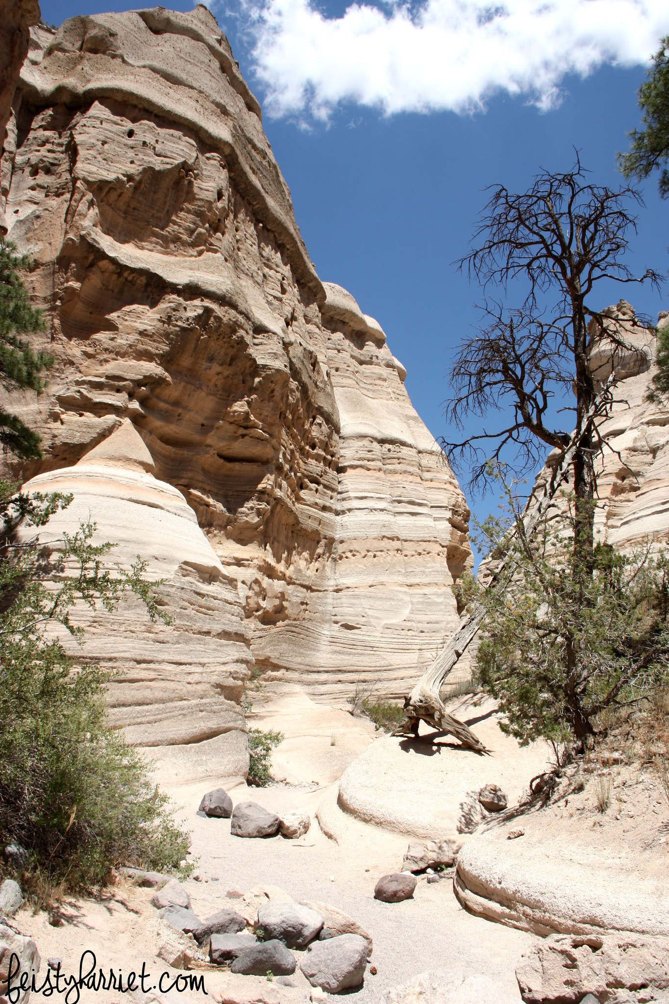 Kasha-Katuwe Tent Rocks NM_feistyharriet_July 2016 (2)