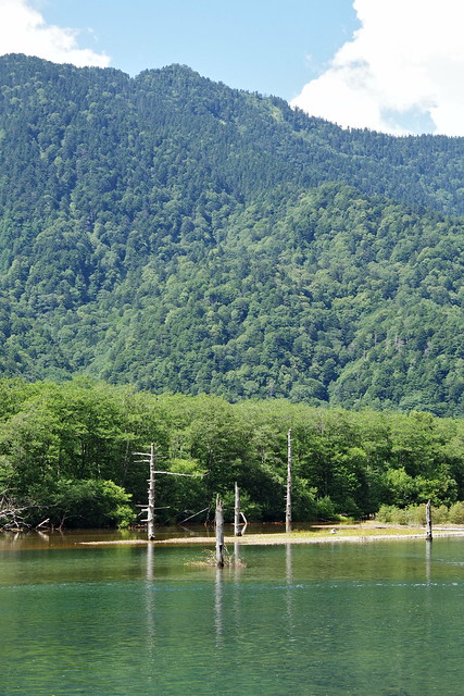 Taisho-ike pond Kamikochi 2016 summer 10